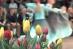 Zrzut ekranu 2015-04-19 o 23.56.56