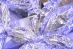 Zrzut ekranu 2017-12-21 o 12.35.01