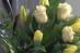 Zrzut ekranu 2018-04-16 o 13.11.05